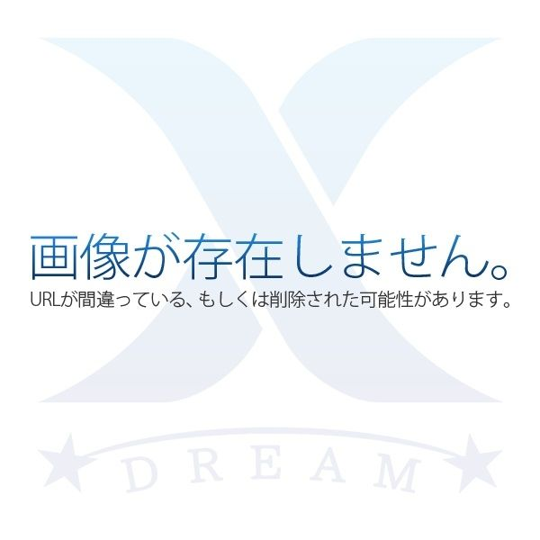 習志野市実籾2丁目【賃貸居住】アパート(パノラマ)