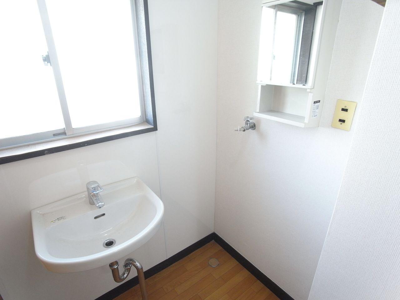 鏡の下は洗濯機置場