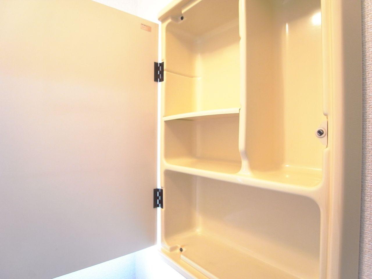 トイレットペーパーや掃除道具が収納可能